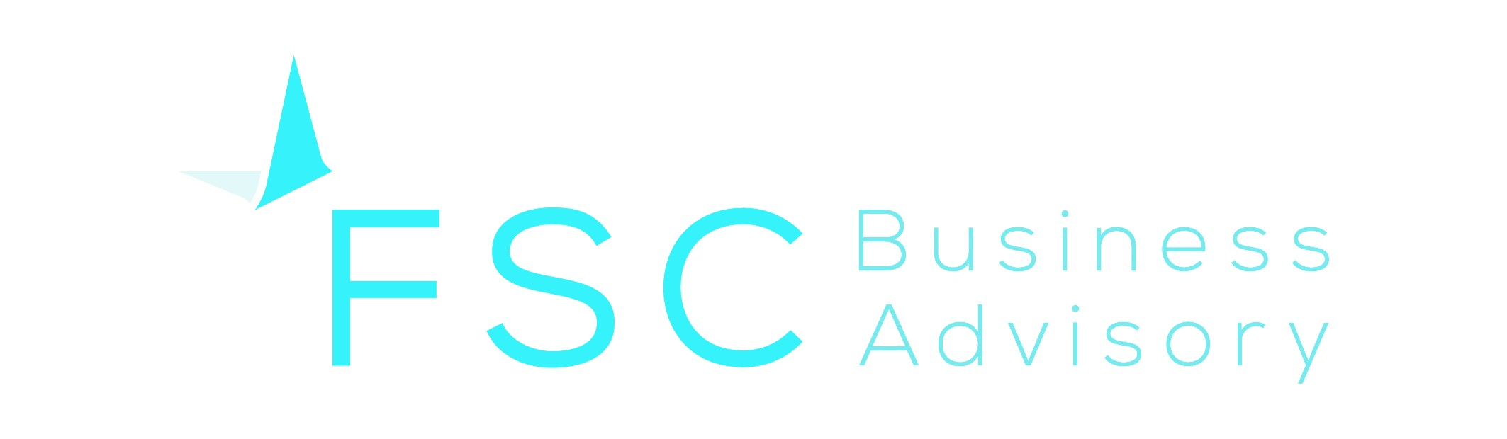 FSC Business Advisory