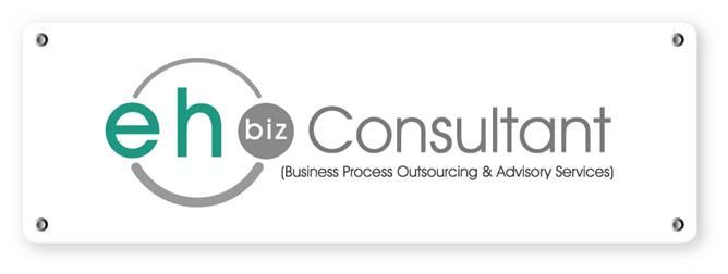 EH Biz Consultant